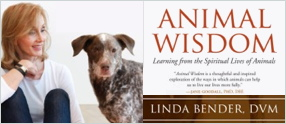 Animal Wisdom - Linda Bender, DVM